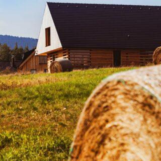 Léto, slunce a seno patří k naši chaloupce👍😉 . . . . . . #ubytovani #rent #booking #hory #horyacestovani #chalupa #ubytovaninahorach #lyzovani #bezky #horskakola #vylety #vyhlidky #priroda #orlickehory #cechy #suggestiva
