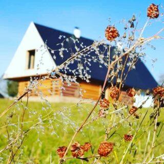 Krásný podzimní den 🙏😉 #Chalupa #zahorka #photo by Michaela Šotolová👍 . . . . . . #ubytovani #rent #booking #hory #horyacestovani #chalupa #ubytovaninahorach #lyzovani #bezky #horskakola #vylety #vyhlidky #priroda #orlickehory #cechy #chaloupka
